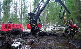 Kā izvairīties no dīkstāves, strādājot ar meža mašīnām