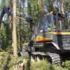 Saudzīgu meža izstrādes tehnoloģiju meklējumos