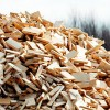 Biomasas patēriņš būtiski pieaugs