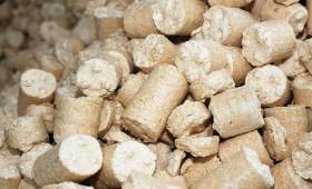 Arī biomasai būs FSC un PEFC sertifikāti