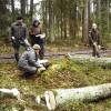 Koku zādzības turpinās
