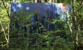 Gleznas meža vidē