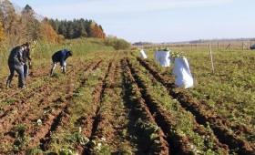 LLU Meža fakultātes speciālisti īsteno Latvijas – Lietuvas pārrobežu projektu: