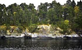 ☂ Somija radīs pieprasījumu pēc 4 milj. m3