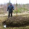 ☂ Latvijas Evaņģēliski luteriskās baznīcas mežsaimnieciskā sistēma