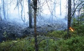 Modelē Latvijas nākotnes klimatu