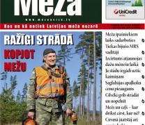 Meža Avīze Nr. 232 (10.2014.)