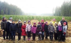 Dodas mežā, lai  mācītos cirst eglītes