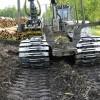 Aizsargāts: Tiks pieprasīts mežizstrādes pakalpojums cirsmu izstrādei mitrās augsnēs