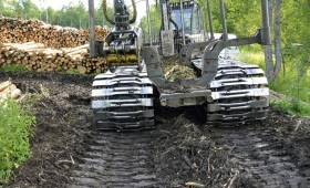 Noteikti sodi par nelikumīgi iegūtas koksnes darījumiem