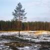 Latvija kā zaļa valsts esot mīts