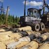 Prasa dezinficēt mežizstrādes tehniku