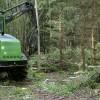 ☂ AS «Latvijas valsts meži» veic pētījumus ekonomiskākai mežu apsaimniekošanai