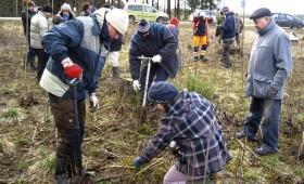 Meža īpašnieki mācās stādīt kokus