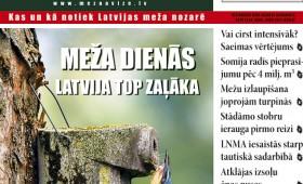 Meža Avīze Nr. 239 (05.2015.)