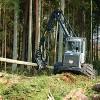 Mežizstrādes apjomu kāpināšana neapdraudētu oglekļa piesaisti