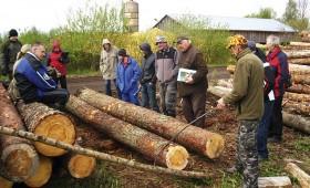Meža īpašnieki mācās uzmērīt baļķus
