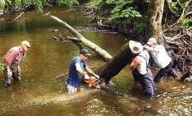 Upei vajag skābekli