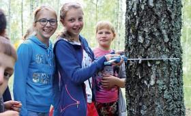 Iepazīst mežu kopā ar SIA «Bergvik Skog»