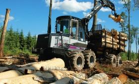 ☂ Apaļkoksnes un mežizstrādes pakalpojumu cena ilgtermiņa līgumplatībās