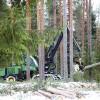 Valsts nodevu par mežsaimnieciskām darbībām varēs maksāt avansā