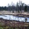 Igaunijā izsludina ārkārtas situāciju
