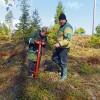 VMD darbinieki aicina stādīt kokus