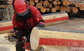 Latvijas čempionāts koku gāzējiem
