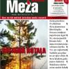 Meža Avīze Nr. 253 (7.2016.)