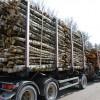 Nodokļa likmi meža īpašniekiem nemainīs