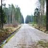Iespējams pieteikties atbalstam mežsaimniecības infrastruktūrai