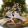 AS «Latvijas valsts meži» veikalā – eglītes un rotājumi Ziemassvētkiem