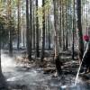 Sargā mežu no ugunsgrēka!