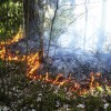 Ar uguni vasarā jārīkojas atbildīgi