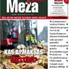 ☂ Meža Avīze Nr. 265 (07.2017.)
