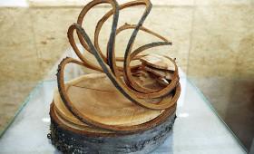 Koka membrāna ūdens filtrēšanai