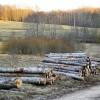 ☂ Iedzīvotāju ienākuma nodokļa piemērošana fizisko personu veiktajiem darījumiem ar kokmateriāliem