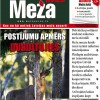 ☂ Meža Avīze Nr. 268 (10.2017.)