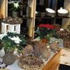 AS «Latvijas valsts meži» piedāvā  eglītes podiņos un dāvanas no dabas materiāliem