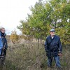 ☂ Pieprasījums pēc kvalitatīvas koksnes pieaug