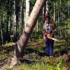 Mežzinim sava ēna