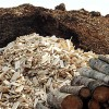 Spriež par koksnes produktu dzīves cikla paildzināšanu