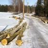 Slēdz lauku ceļus kokmateriālu izvešanai