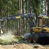 Konkurss par mežsaimniecības pakalpojumiem
