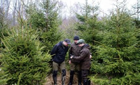 ☂ Modernās tehnoloģijas SIA «Bergvik Skog» mežsaimniecībā