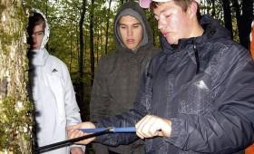 ☂ Cik izmaksā meža inventarizācija