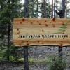 AS «Latvijas valsts meži» valsts budžetā iemaksājusi miljardu €