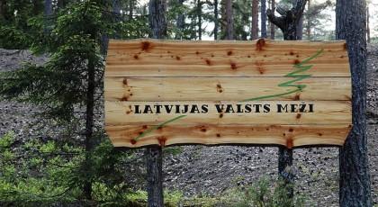 ☂ Vai AS «Latvijas valsts meži» ir privatizējama?