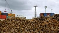 Meža produkcijas eksports pirmajā pusgadā sarucis par 10%; imports par 8%