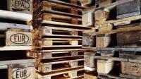 Izveido 9,3 miljonu ASV dolāru fondu, lai palīdzētu meža nozarei ar COVID–19 izmaksām
